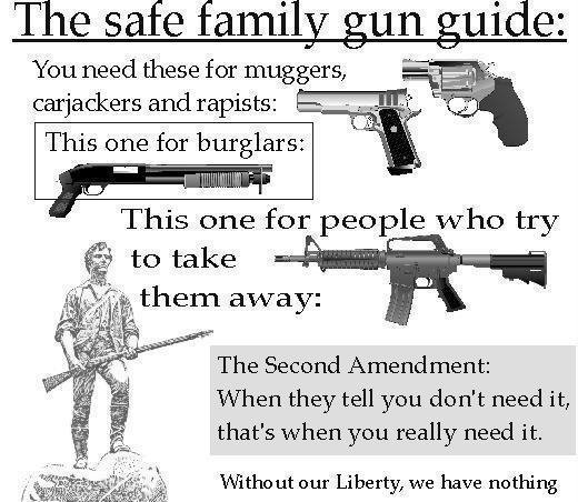 2ND AMENDMENT FOR HOME OWNERS