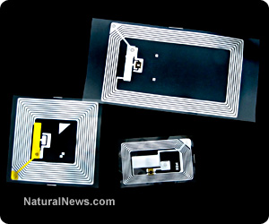 Rfid-Tracking-Chips