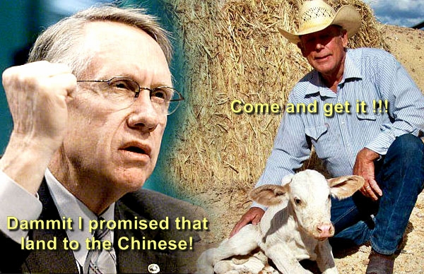 cliven-bundy-harry-reid