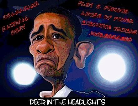 deer-in-the-headlights
