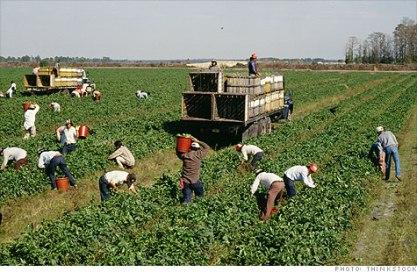 MigrantWorkers