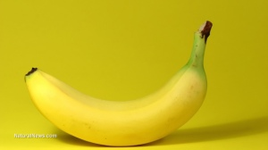 Banana-Yellow