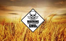wheat_field_warning