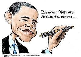 ObamaAssaultWeapon